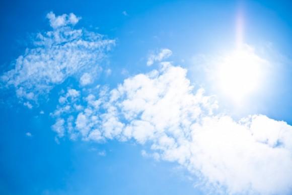 夏の強い日差し